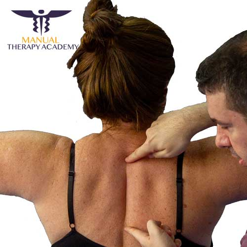 Postural Balance @ Manual Therapy Academy